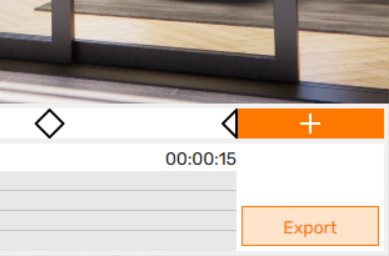 Video Export button